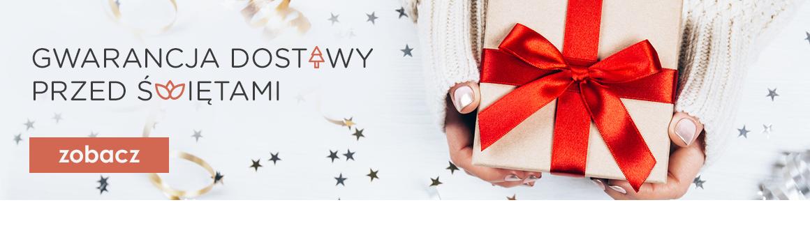 Gwarancja dostawy przed Świętami*